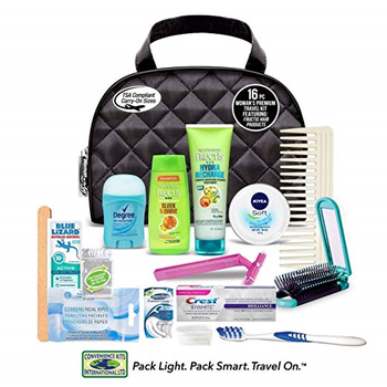 Woman on the Go 16 pc Fructis Premium Travel Kit